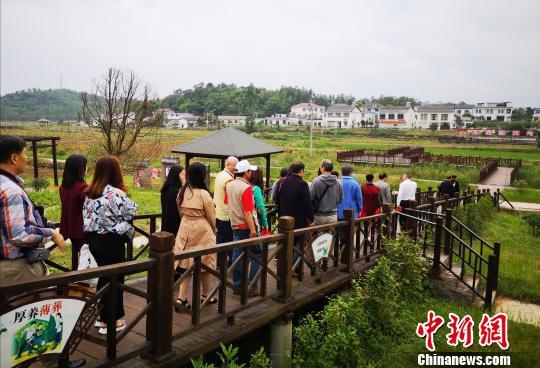 海外华文媒体走进北川 点赞羌城新变化