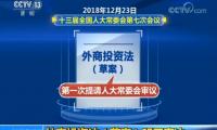 """外商投资法草案3月15日表决 将取代""""外资三法"""""""