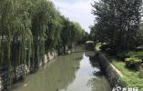問政追蹤|兩條河道黑臭水體嚴重 濱州住建局:11月底徹底完成治理