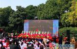 荆川公园:海棠节正式开幕,海棠花海待君来