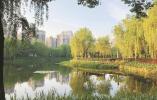 宁波环保产业 跳出末端治理移步新场景