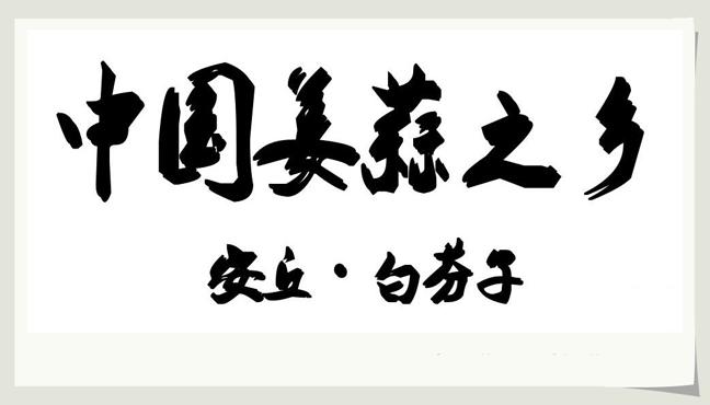 中国姜蒜之乡