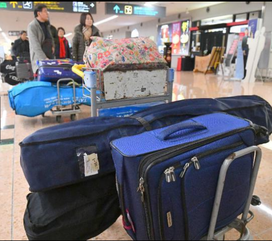 关系转暖?日韩一停航线路重开 韩国客一到日本都去了这里