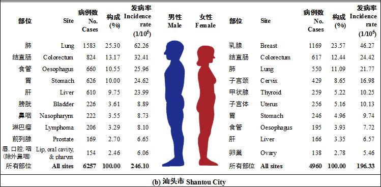 """柯杨教授团队基于医保系统大数据构建""""癌症发病监测""""新模式"""