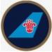 中国南方航?#23637;?#20221;有限公司