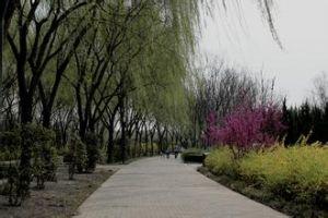 隋唐遗址公园