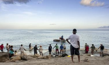 Caribbean to test greenhouse-gas linked ocean acidity